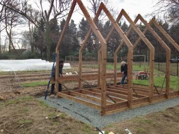 UNC Community Garden Greenhouse Ground Broken Szostak Design